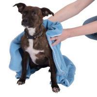 Serviette pour chiens elevage du bois foucher